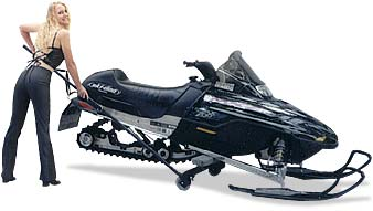 Eazymove Snowmobile Carts